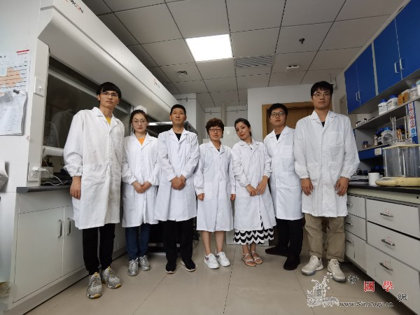 新研究解决燃料电池电解质难题_质子-电导率-电解质-