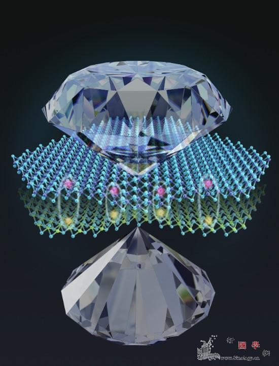 新型二维材料物理研究取得新进展_瓦尔-压强-耦合-