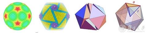 核-壳-表面复合球体的结晶态形貌控制_形貌-复旦大学-猪瘟-