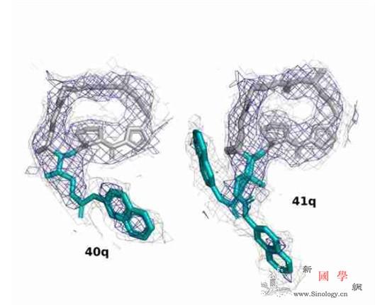 科学家构建更好抗生素_菌株-耐药性-耐药- ()