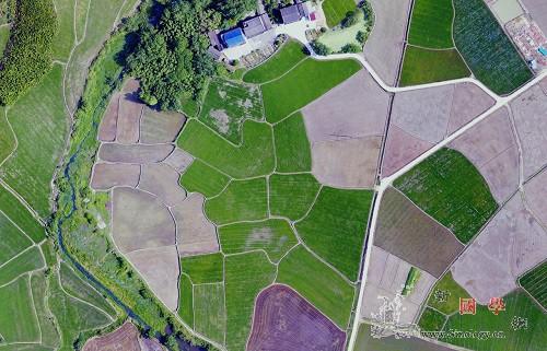 """两张图""""搞定""""全球农田基础数据_遥感-农作物-统计数据- ()"""