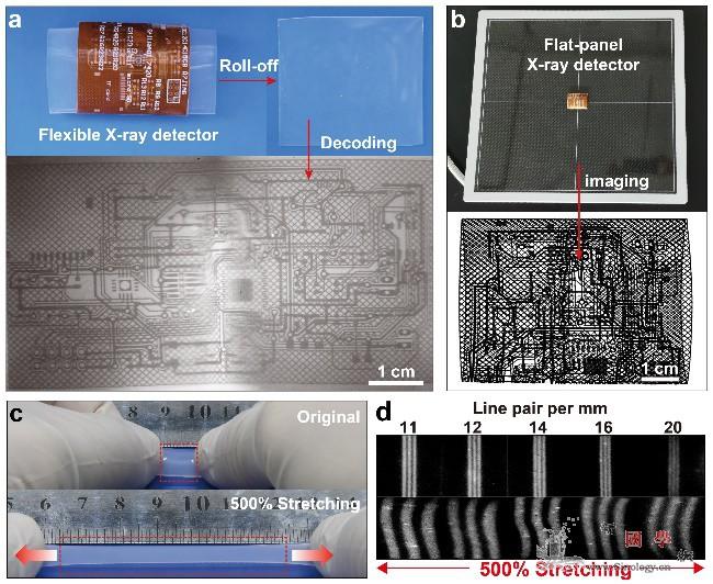 高分辨X射线发光扩展成像机制获解析_射线-柔性-成像-