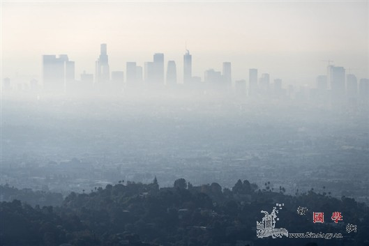 脏空气影响孩子心脏健康_空气污染-拉美-斯坦福大学- ()