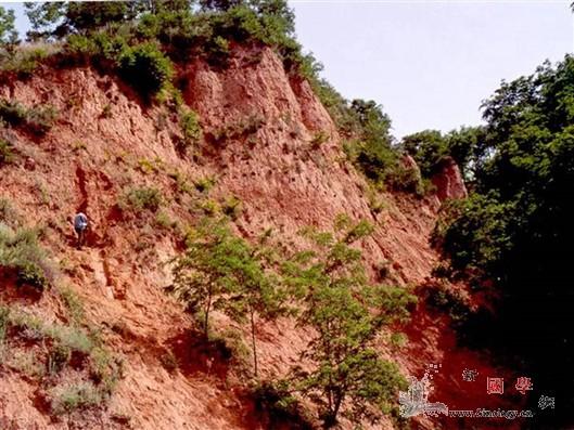 中国北方降水在距今最近的持续温暖期如_黄土高原-东亚-季风-